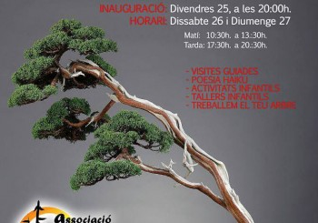 Expo Bonsai Alcanar 2015