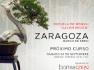 Bonsai School in Zaragoza.