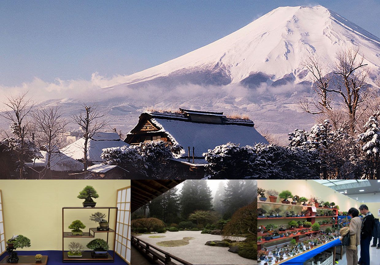 Fuji Mount with snow in winter.  Japanese gardens