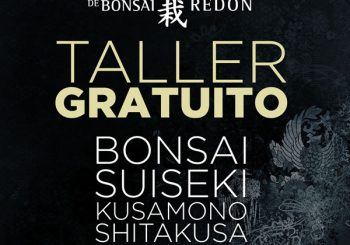 Taller gratuito de Bonsai, Suiseki, Kusamono y Shitakusa